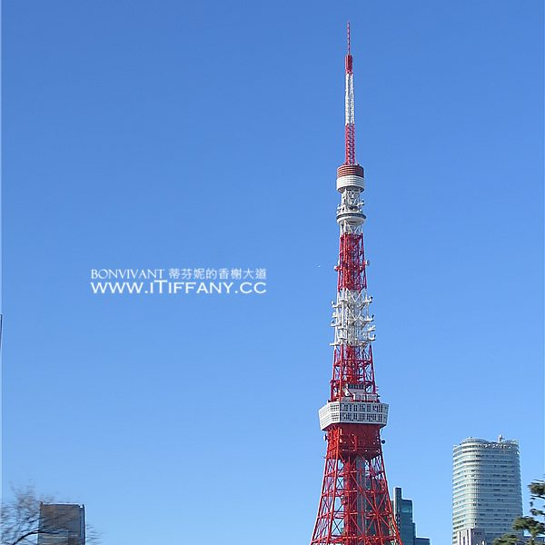 IMG_7039_東京塔